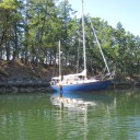 Many of the coves are steep-to, making it possible to get your boat very close to shore. This BC park provided rings on shore making it simple to attach a stern line.